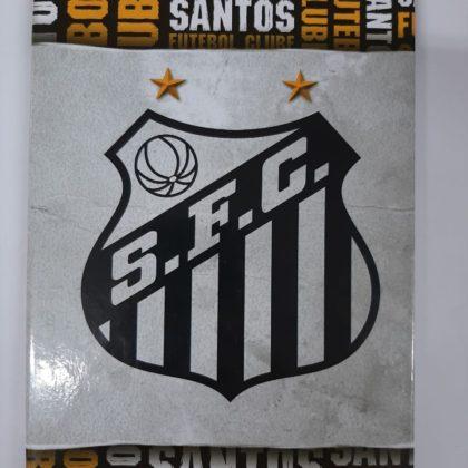 Caderno Brochura 96 fls Santos